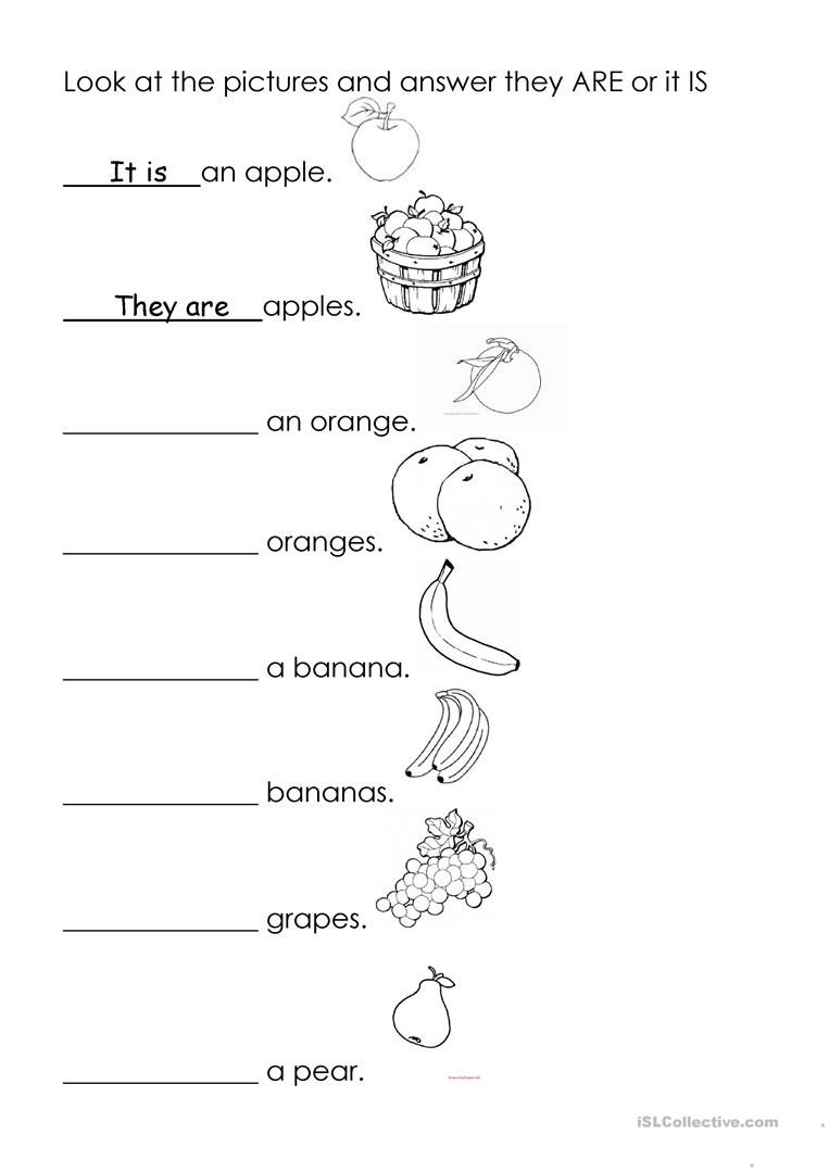 yes and no questions grade 5 pdf