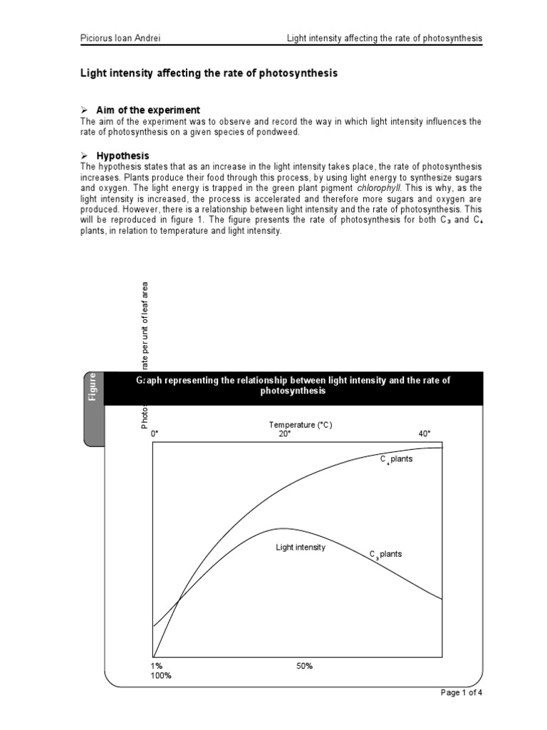 effect of light on photosynthesis pdf
